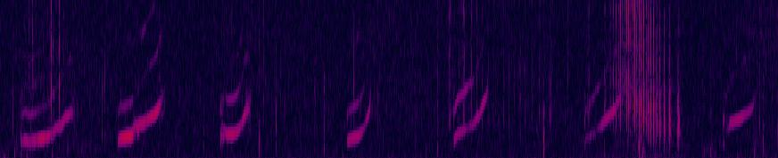 Spectrogram of Sonic whistling